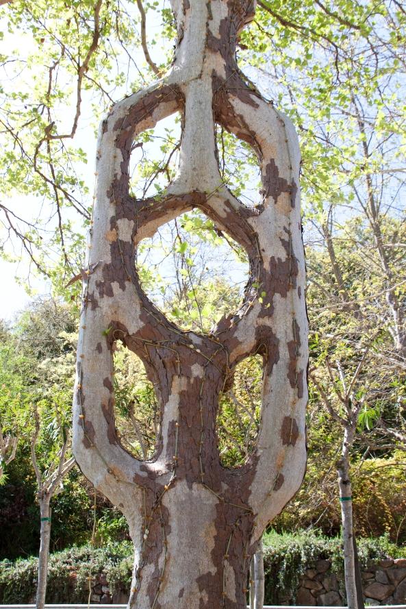 Emblem Tree