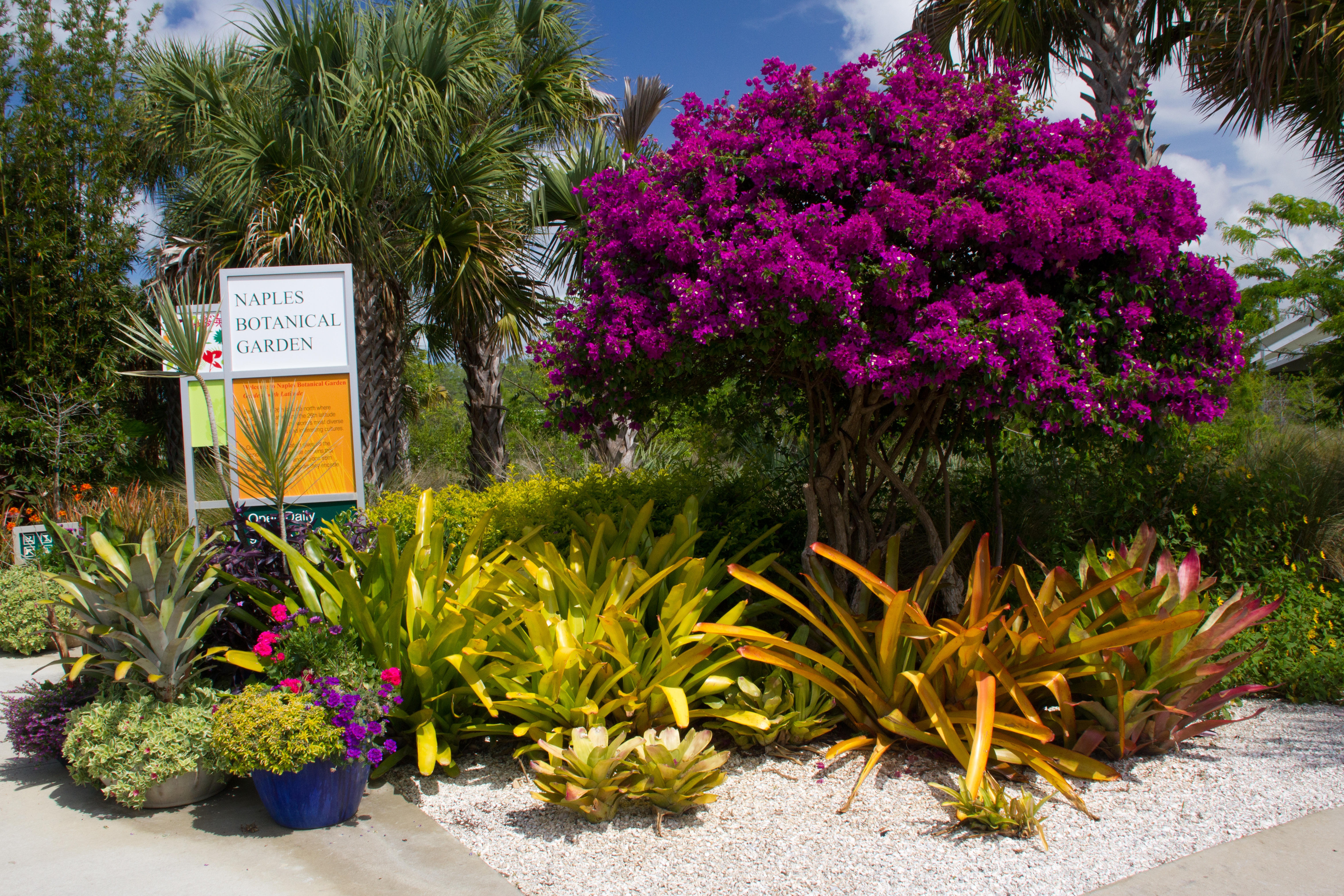 Published September 11, 2012 At 6072 × 4048 In Florida: Naples Botanical  Garden