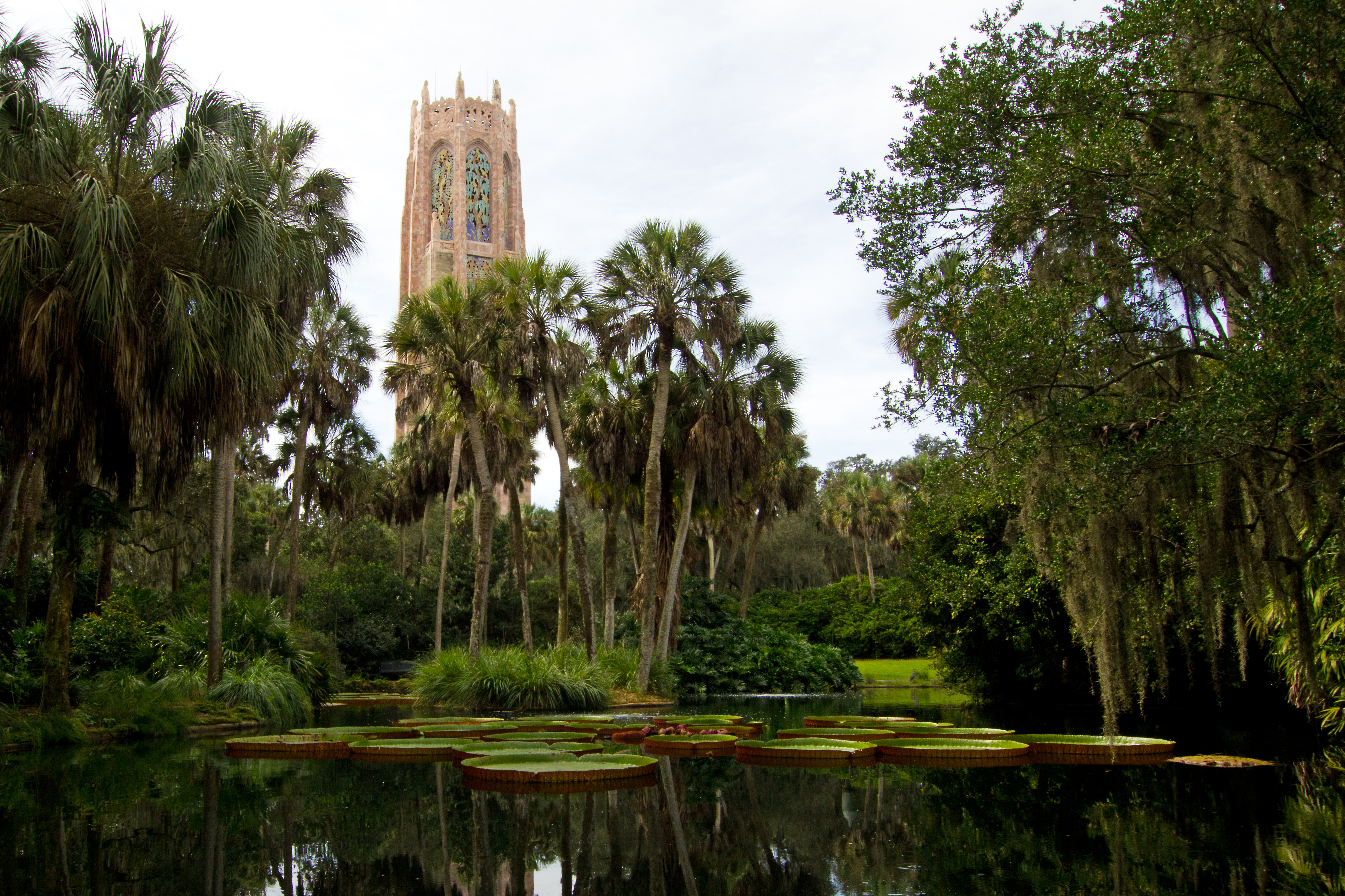 Bok Tower and Reflection Pool with Victoria Waterlilies