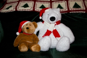Our Santa Teddy Bears