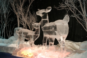 Ice Deer in Woods