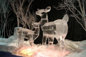Ice Deer in Woods