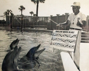 Vintage Photo:  Dolphins and Songbook