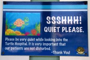 Sea Turtle Hospital Quiet Sign
