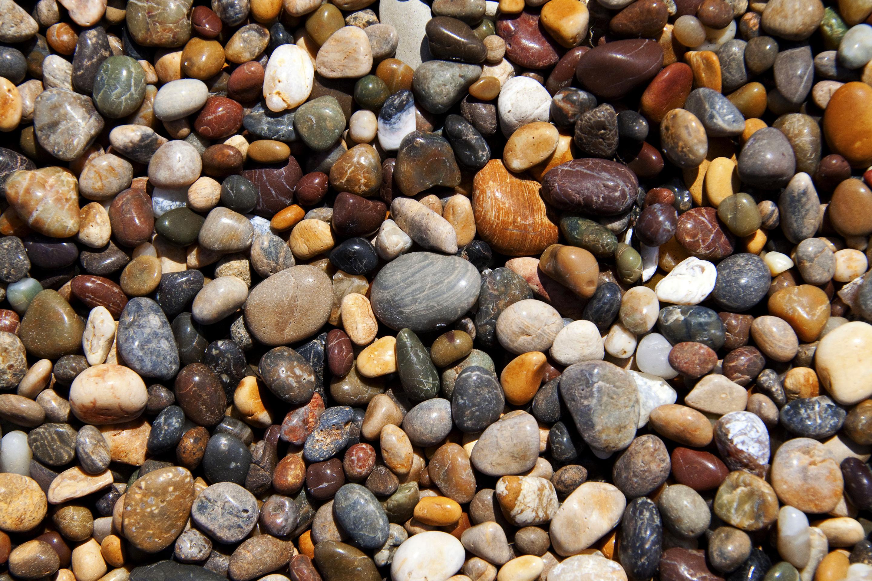 California: Pebble Beach/Bean Hollow State Beach | naturetime