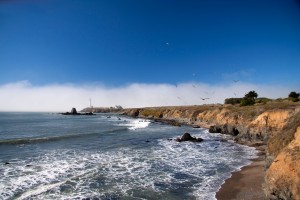 Pigeon Point Lighthouse Coastline