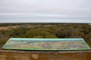 Myakka Canopy Tower View