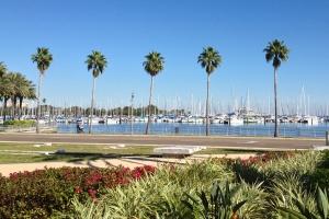 Tampa Bay Waterfront View