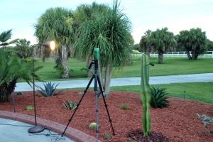 Cactus Flower Movie Setup