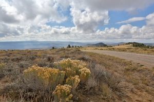 View of Sagebrush Desert at Top of Butte