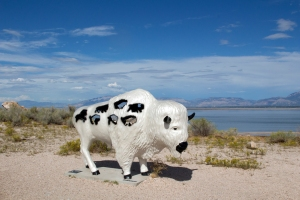 White Buffalo Statue (Sacred Dreams)