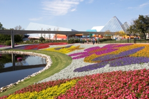 Flower Beds near Future World Pyramid