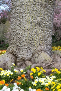 Thorny Trunk of Tree