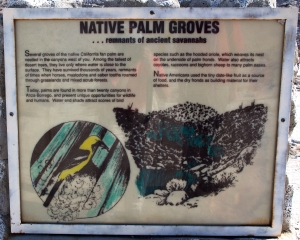 Native Palm Groves Sign