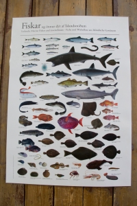 Icelandic Fish Poster