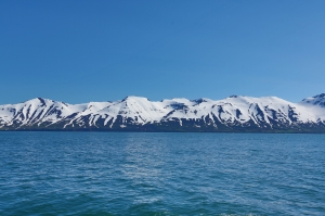Fjord's Snowy Mountains