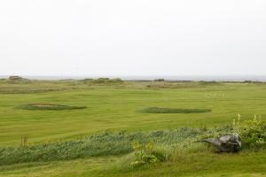 Kalfatjarnarkirkja View of Whale Bone and Coast
