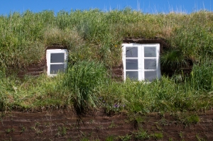 Outside Windows Surrounded by Grass