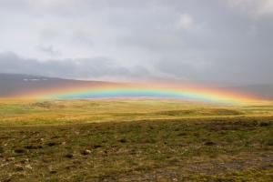 Low Altitude Rainbow Close to Ground