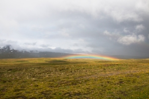 Stunning Low Altitude Rainbow in Landscape