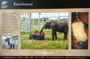 Elephant Enrichment Sign