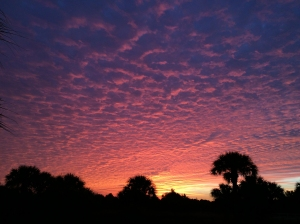 Spectacular Florida Sunrise