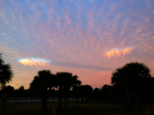 Hole Punch Clouds and Trail