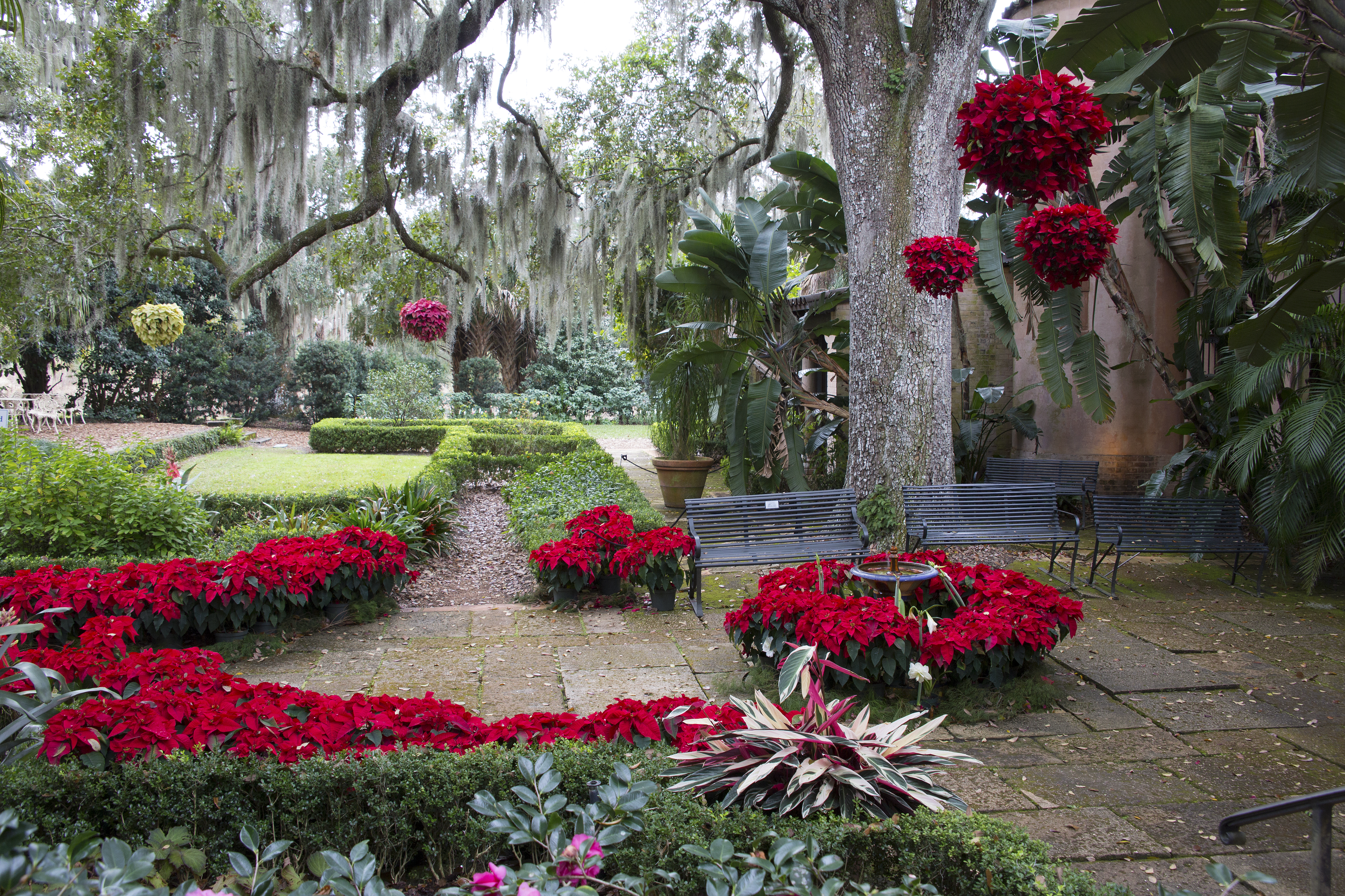 Florida: December at Bok Tower Gardens | naturetime