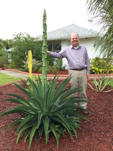 Richard Beside Fast Growing Agave Flower Stalk (September 4, 2014)