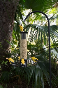 LEGO Goldfinches at Feeder Filled with LEGO Birdseed
