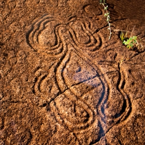 Octopus Petroglyph, Easter Island, Chile