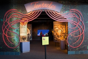 Tentacles Entrance Sign