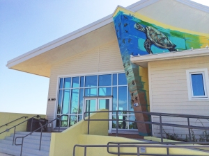 Entrance at Barrier Island Center