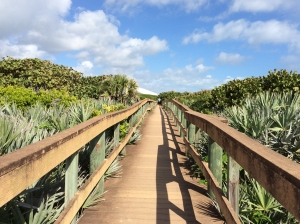 Boardwalk at Barrier Island Center