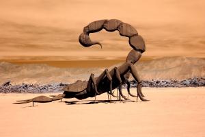 Infrared Scorpion