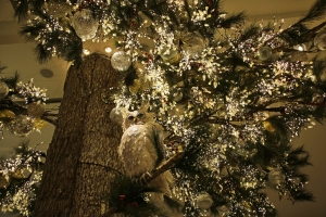 Owl in Glittery Snow Forest