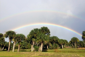 Double Rainbow Over Backyard