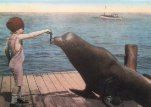 1915 Postcard Featuring Child Feeding Old Ben the Sea Lion at Dock