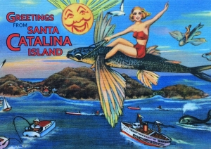 Vintage Catalina Flying Fish Postcard