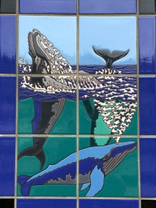 Humpback Whales Tile