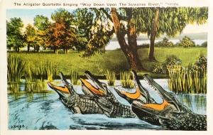 Vintage Postcard: Alligator Quartette Singing