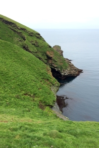 Puffin Nesting Cliff
