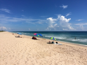Summer Day at Sebastian Beach