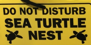 Sea Turtle Nest Caution Sign