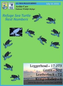 Sea Turtle Nest Totals