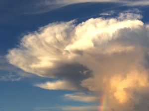 Close-up of Rainbow Cloud