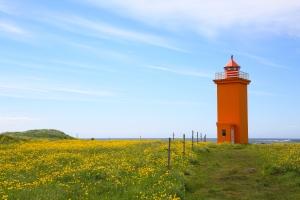 Orange Stafnesviti Lighthouse in Field of Buttercups