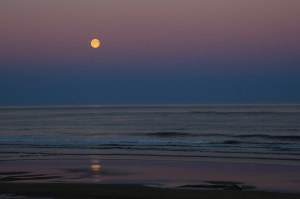 Strawberry Moonrise over Ocean