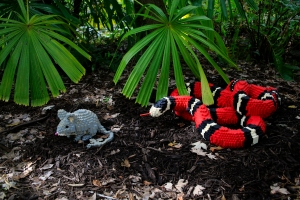 Milk Snake and Field Mouse