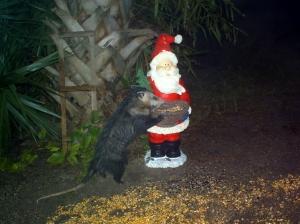 Opossum and Santa